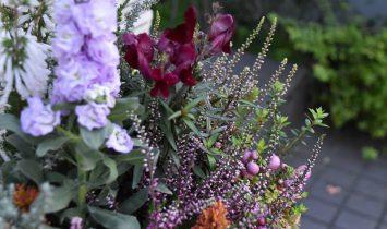 花壇のリニューアル